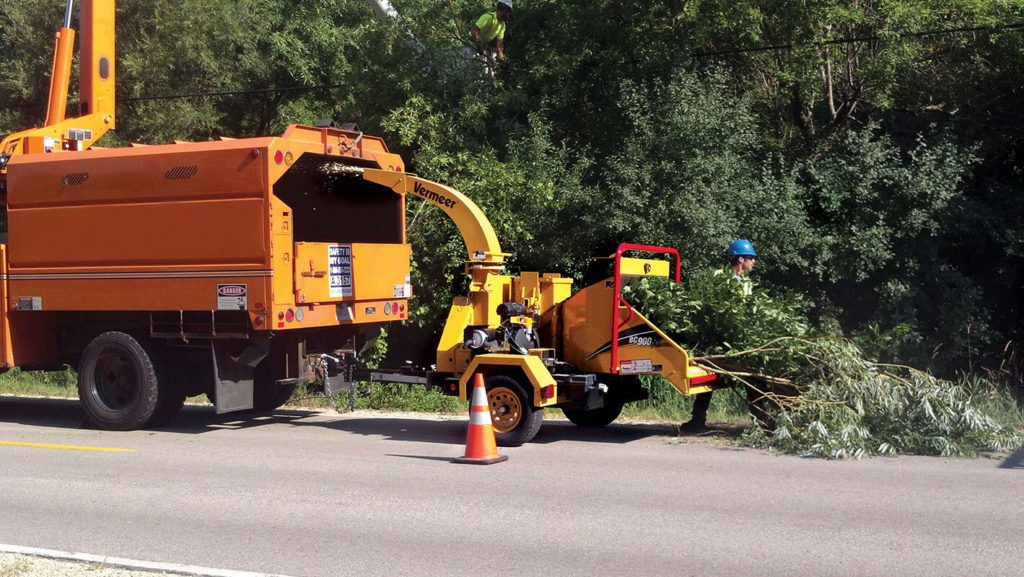 Commercial Tree Services-Sunny Isles Beach FL Tree Trimming and Stump Grinding Services-We Offer Tree Trimming Services, Tree Removal, Tree Pruning, Tree Cutting, Residential and Commercial Tree Trimming Services, Storm Damage, Emergency Tree Removal, Land Clearing, Tree Companies, Tree Care Service, Stump Grinding, and we're the Best Tree Trimming Company Near You Guaranteed!