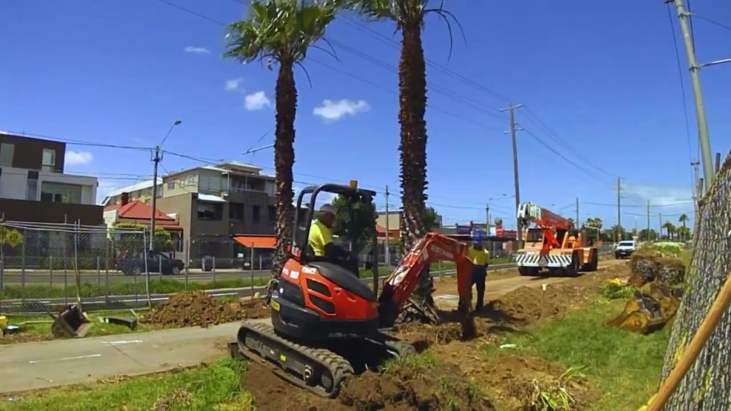 Palm Tree Removal-Sunny Isles Beach FL Tree Trimming and Stump Grinding Services-We Offer Tree Trimming Services, Tree Removal, Tree Pruning, Tree Cutting, Residential and Commercial Tree Trimming Services, Storm Damage, Emergency Tree Removal, Land Clearing, Tree Companies, Tree Care Service, Stump Grinding, and we're the Best Tree Trimming Company Near You Guaranteed!